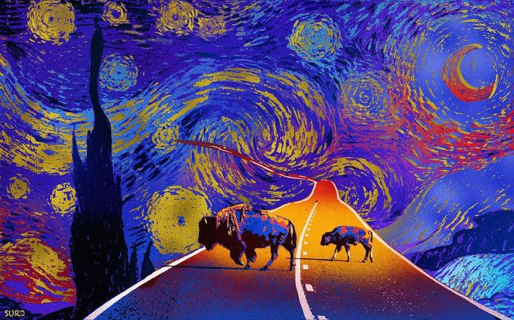 where the space buffalo roam